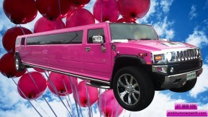 Kids parties Perth are an exciting and fun event when you choose a Limo birthday Party in Perth at Pink Hummer Perth