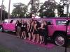 pink-limo-kingspark